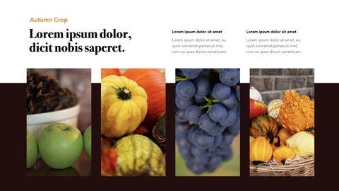Autumn Crops Windows Keynote_13