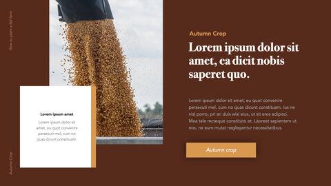Autumn Crops Windows Keynote_16