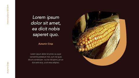 Autumn Crops Windows Keynote_19