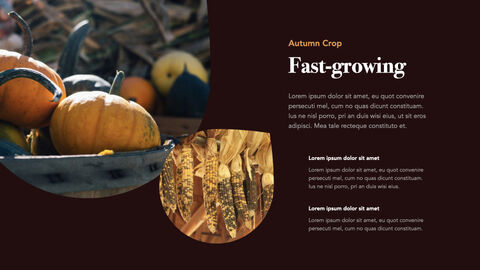 Autumn Crops Windows Keynote_20