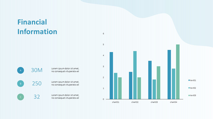 Financial Information PPT Slide Deck_01