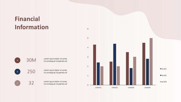 Financial Information PPT Slide Deck_02
