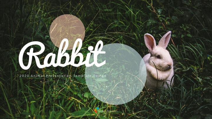 토끼 비즈니스 전략 파워포인트_01