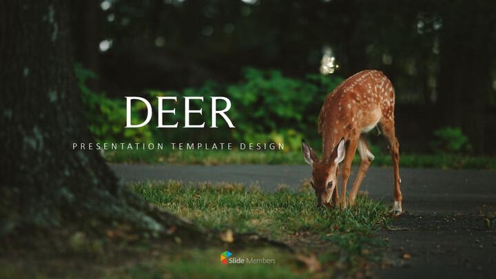사슴 회사 프로필 템플릿 디자인_01