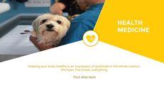동물 의료 슬라이드 프레젠테이션_09