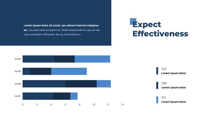 Expect Effectiveness Presentation Slide_01