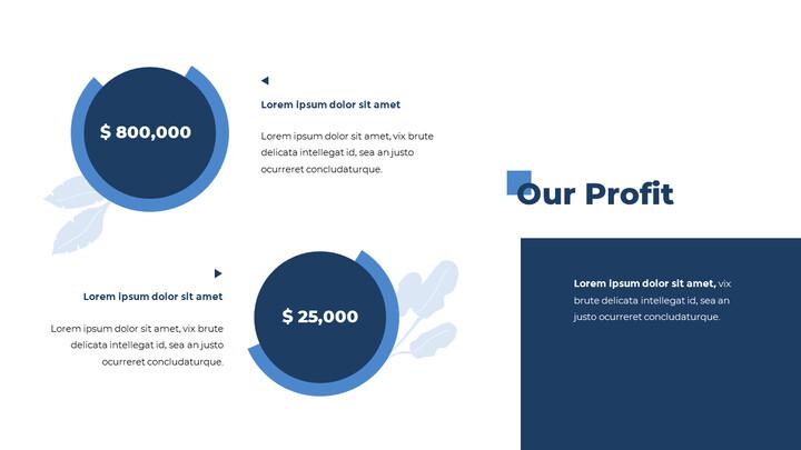 Our Profit PPT Slide Deck_01
