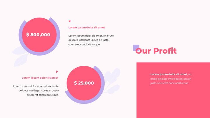 Our Profit PPT Slide Deck_02