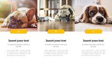 애완 동물 프레젠테이션용 PowerPoint 템플릿_16