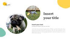 애완 동물 프레젠테이션용 PowerPoint 템플릿_19