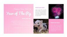 돼지의 해 파워포인트_09