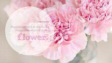 Blume_05