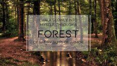forêt_03