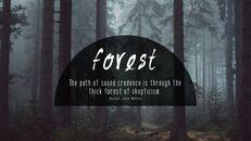 forêt_04
