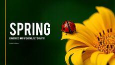 Primavera_03