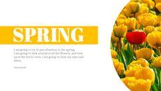 Primavera_06