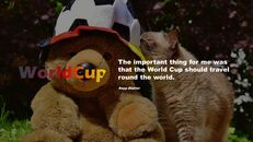 World cup_05