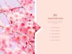 Cherry Blossom Ending - Free Presentation Templates_03