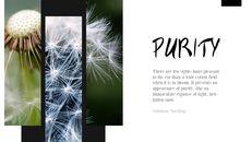 Purity_03