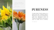 Purity_05