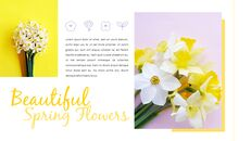 봄 꽃 프레젠테이션 PowerPoint 템플릿 디자인_13