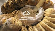 신선한 빵 키노트 템플릿_11