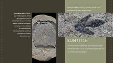 화석 Google 프레젠테이션 템플릿_08