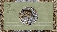 화석 템플릿 PPT_12