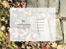 Google 슬라이드 이미지 무료 다운로드 - 낙엽으로 덮인 도로_03