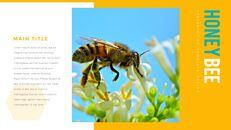 허니비(꿀벌) 간단한 디자인 템플릿_11