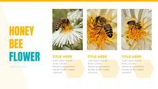 허니비(꿀벌) 창의적인 구글슬라이드_04