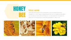 허니비(꿀벌) 창의적인 구글슬라이드_05
