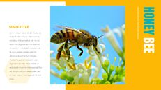 허니비(꿀벌) 창의적인 구글슬라이드_11