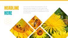 허니비(꿀벌) 창의적인 구글슬라이드_20