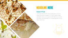 허니비(꿀벌) 창의적인 구글슬라이드_24