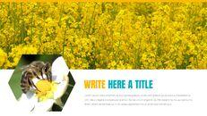 허니비(꿀벌) 창의적인 구글슬라이드_29
