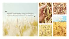 농업 산업 배경 파워포인트_08