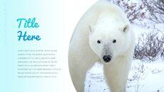 북극곰이 사는 곳 Google 프레젠테이션 템플릿_05