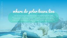 북극곰이 사는 곳 Google 프레젠테이션 템플릿_08