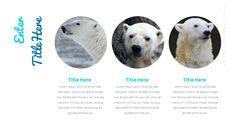 북극곰이 사는 곳 Google 프레젠테이션 템플릿_11
