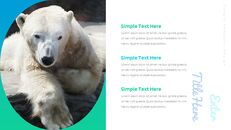 북극곰이 사는 곳 Google 프레젠테이션 템플릿_13