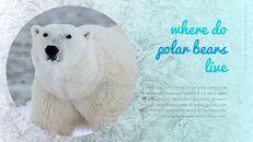 북극곰이 사는 곳 Google 프레젠테이션 템플릿_15