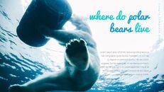 북극곰이 사는 곳 Google 프레젠테이션 템플릿_18