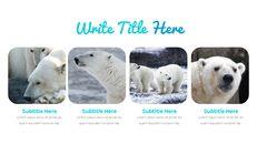 북극곰이 사는 곳 Google 프레젠테이션 템플릿_20