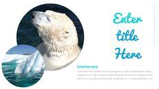 북극곰이 사는 곳 Google 프레젠테이션 템플릿_26