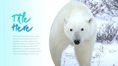 북극곰이 사는 곳 피피티 슬라이드_05
