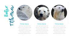 북극곰이 사는 곳 피피티 슬라이드_11