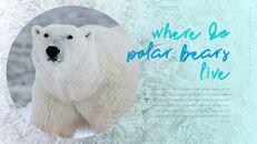 북극곰이 사는 곳 피피티 슬라이드_15