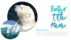 북극곰이 사는 곳 피피티 슬라이드_26