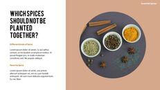 허브와 향신료의 차이점은 무엇입니까? 파워포인트 프레젠테이션 샘플_03